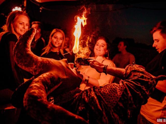 Vurige nar eet vuur in Antwerpse bar
